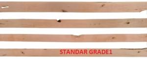 STANDAR GRADE1